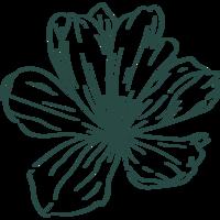 Image de la categorie Fleurs & Plantes de Click en CoteLub